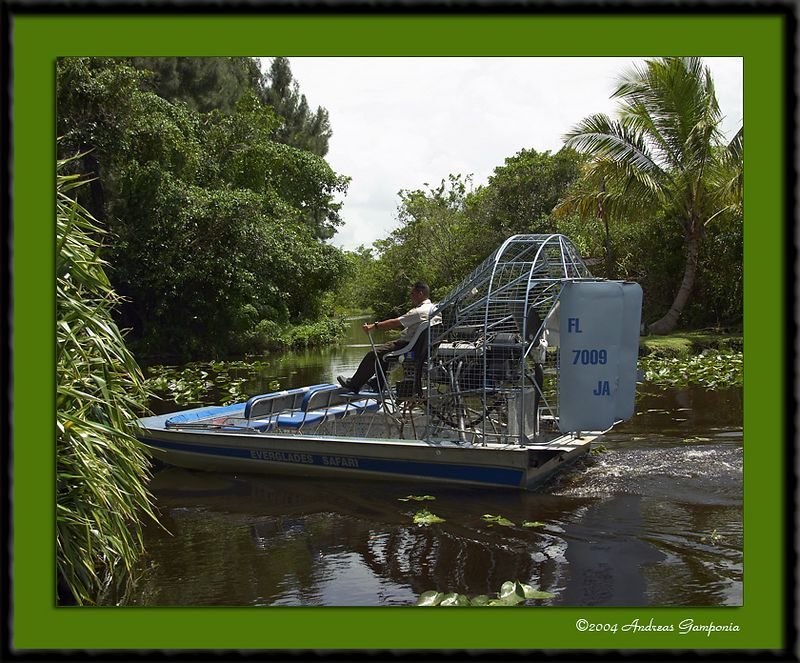 An airboat ride into the Everglades...