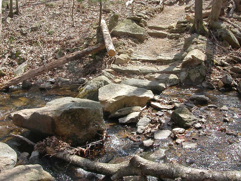 Scenes along Buck Hollow Trail.  Top stream crossing and new rock bridge.
