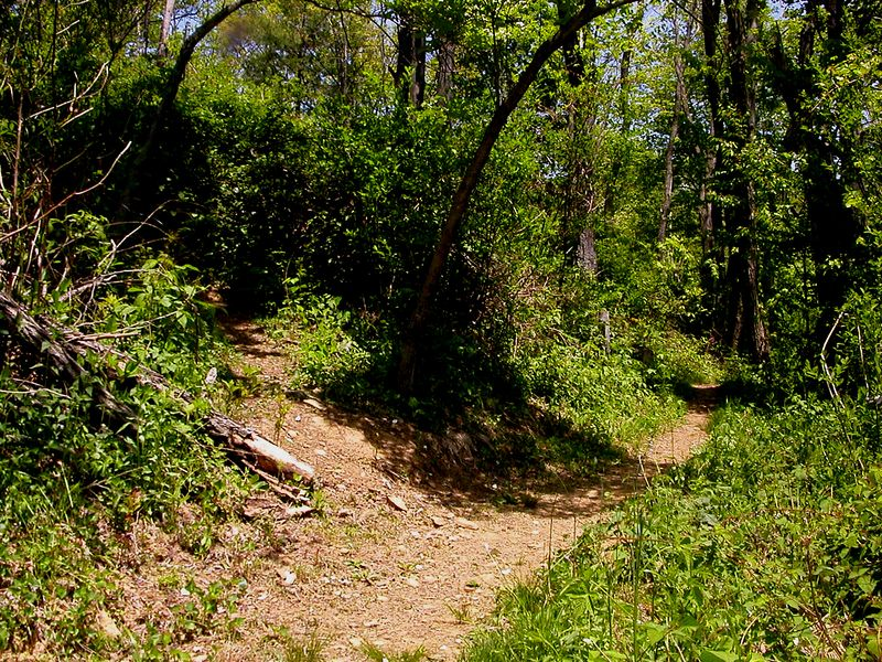 A little ways up the trail a small trail branches off to the local graveyard.