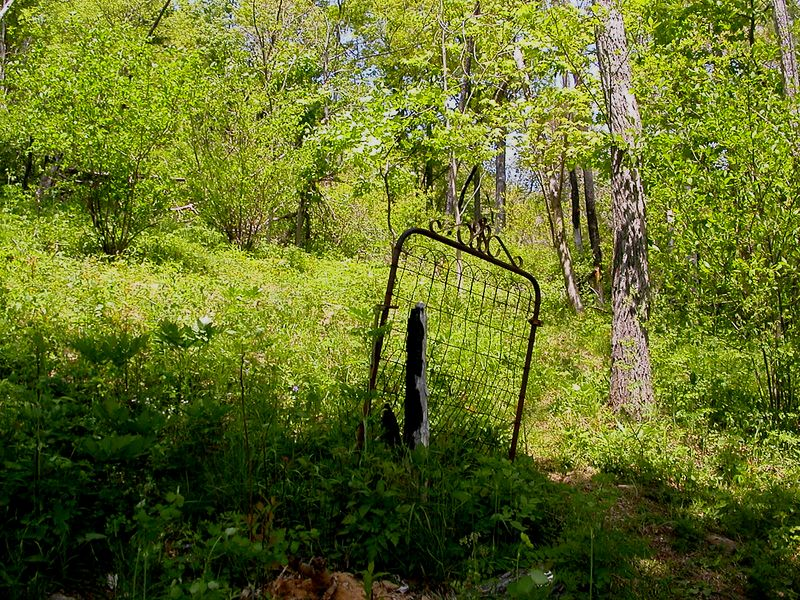 The old rusty gate!