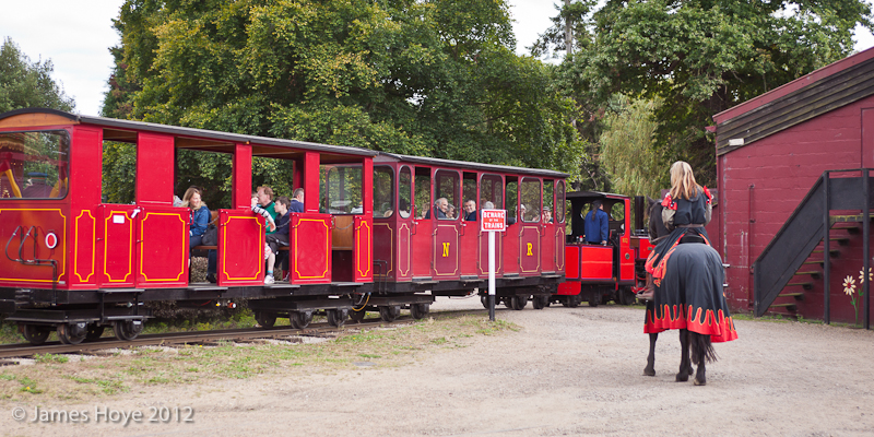A sight not usually seen on Bressingham's Nursery Line
