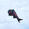 Giant Flying Fish Black