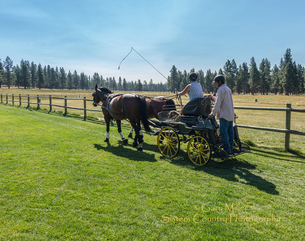 Images from a cart driving equestrian seminar at the Durdan ranch outside Sisters, Oregon on August 17, 2012 - Gary N. Miller - Sisters Country Photography