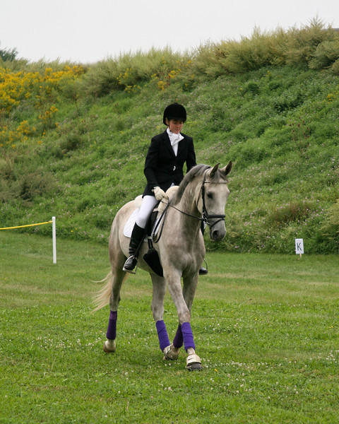 Dressage demonstration