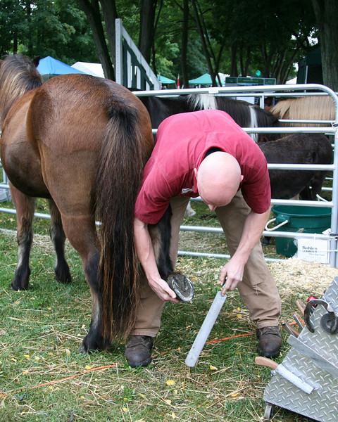 Farrier demonstration