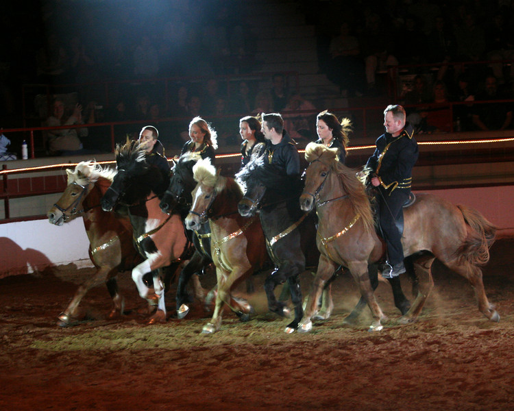 <h5>The Gudmar Petursson Icelandic Show Team</h5> <br>