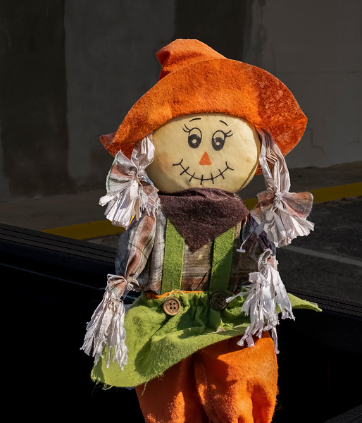 A cute scarecrow I saw the back of a pickem up truck