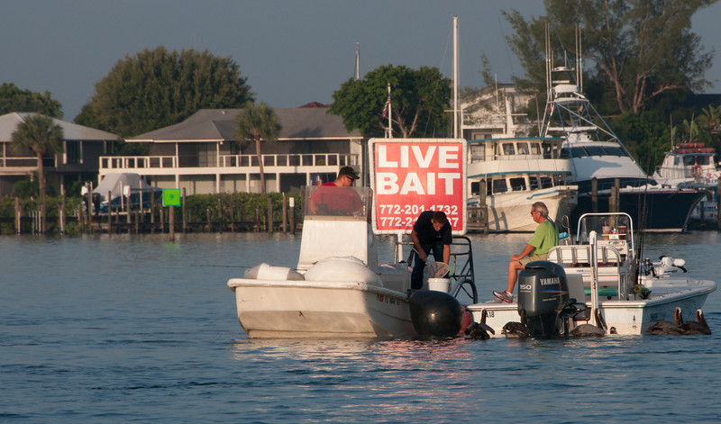 We stopped at this boat to pick up some live bait