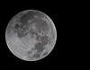 • Lunar Eclipse Photo December 21, 2010<br /> • Time - 2:08 AM