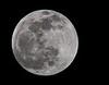 • Lunar Eclipse Photo December 20, 2010<br /> • Time - 8.06 PM