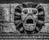 Stone Wall Lion