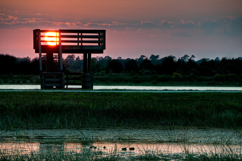 Sunset at the Viera Wetlands - Processed using HDR