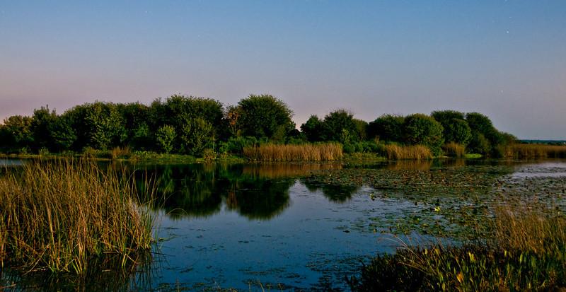 Night photo at Viera wetlands