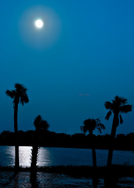 Moon photos from the Viera wetlands - Processed using HDR