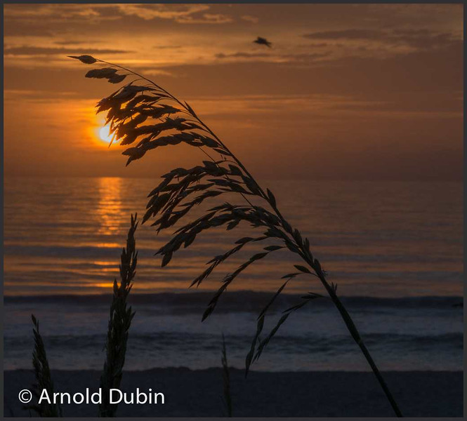 Sunrise at the Indialantic Beach Ocean