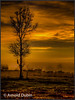 • Location - US441 in Keaninville<br /> • Sunrise