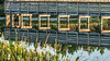 • Location - Wakodahatchee Wetlands<br /> • Repetitive pattern of the boardwalk with its reflection