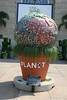 One Planet exhibit at the US Botanic Garden.  Seeds of Success participated by designing an exhibit panel.