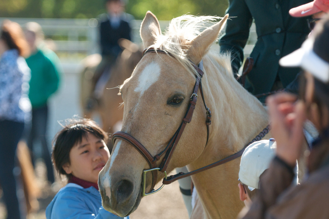 Miwok Stables at Napa Valley Equestrian Center show, May 2, 2010