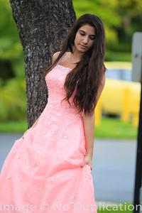 dress - 18