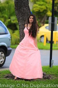 dress - 14