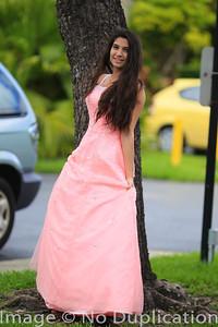 dress - 15
