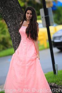 dress - 17