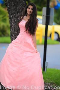 dress - 16