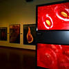 The Photography of Modernist Cuisine: The Exhibition @ the Tech Museum of Innovation