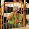 John P. Cleary | The Herald Bulletin<br /> The 2014 Madison County 4-H Fair.