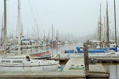 Moss Landing harbor. Different view. Fog. Boats. Masts. Dock.