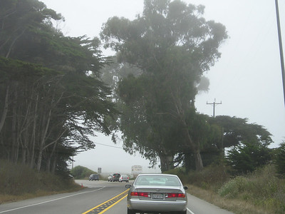 As I approached Moss Landing (in slow, heavy traffic as it had been most of the way), the fog absorbed me, as well.