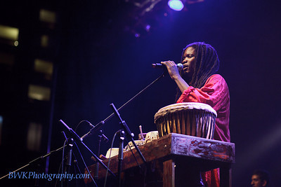 Lamine Toure & Group Saloum at the Montreal 2010 Nuits d'Afrique 18