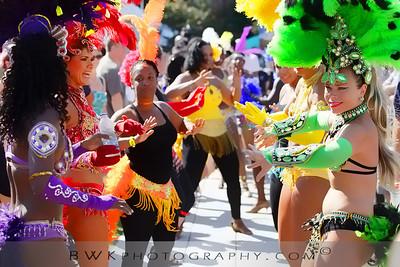 Brazil Parade 18