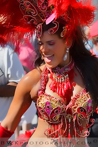 Brazil Parade 16