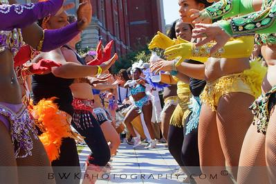 Brazil Parade 14
