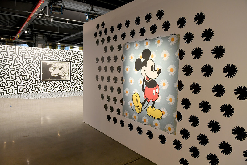 775250995NP00113_Mickey_The