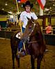 HorseShow-9