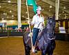 HorseShow-19
