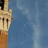 Siena before Palio