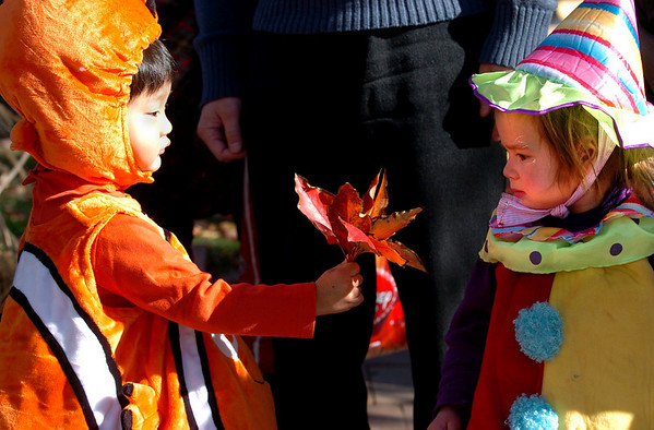 "Kyo Abe,  left,  dressed as Nemo, offers Portia Richards, 2,  some pretty leaves to help her feel better. She had a fall that made her cry.<br /> Pearl Street Mall merchants provided treats to costumed munchkins on Sunday to celebrate the Downtown Boulder Munchkin Masquerade. <br /> For more photos and a video of the event, go to  <a href=""http://www.dailycamera.com"">http://www.dailycamera.com</a>.<br /> Cliff Grassmick / November 1, 2009"
