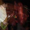 Zeppephilia 2010 1218 78