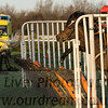 MusselburghRacecourse-14120847