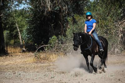 Mustang-July-Misti-Layne_025