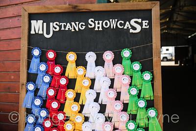 Mustang-July-Misti-Layne_003