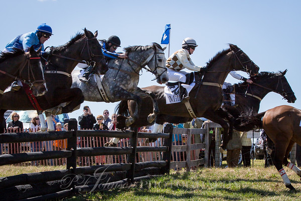 My Ladys Manor Steeplechase 2015