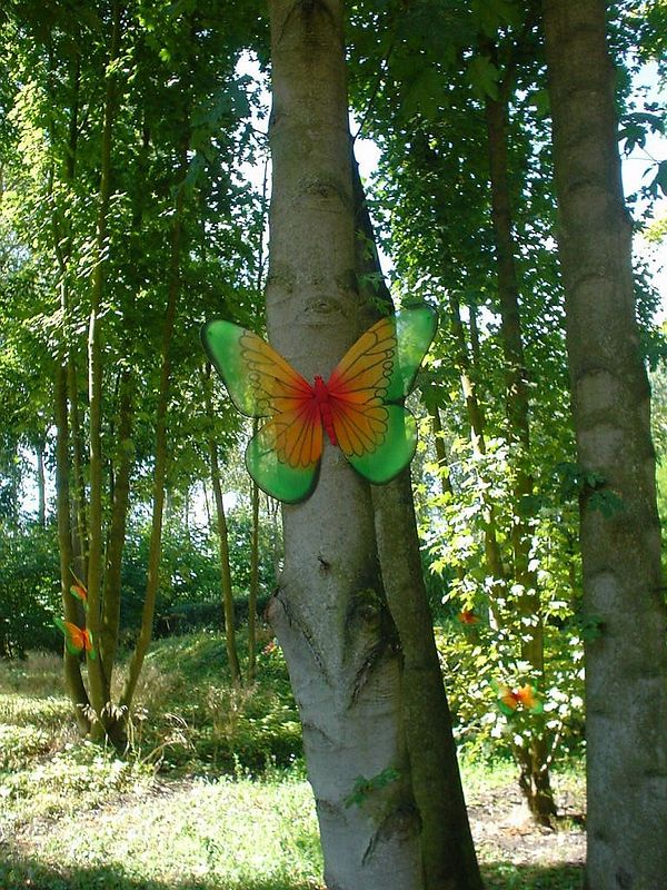 The butterfly garden to enhance the magic feeling