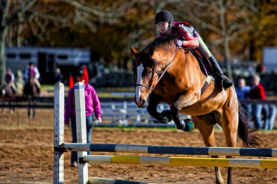 Mystic Valley Horse Show