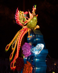 January 10, 2018. NC Chinese Lantern Festival, Koka Booth Amphitheatre, Cary, NC. Copyright © 2018 Jamie Kellner. All Rights Reserved.