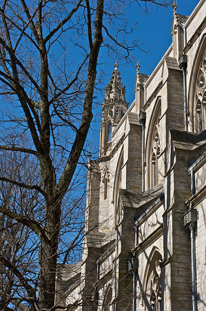 Princeton University  14